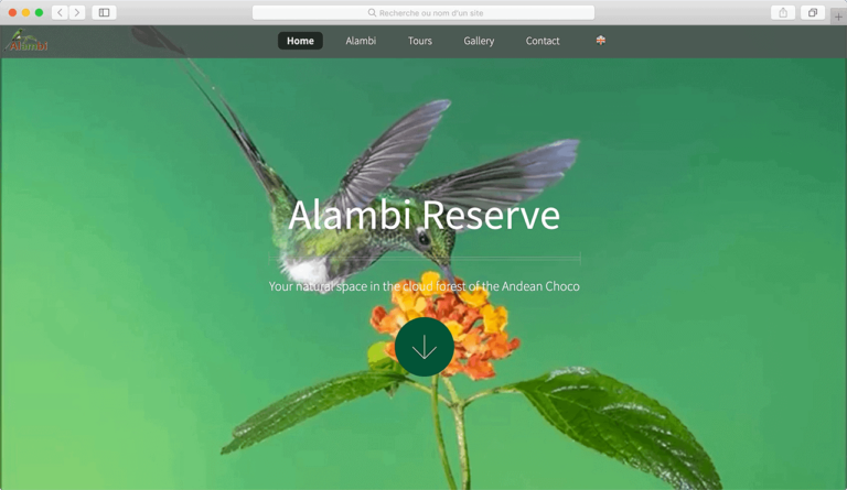 Alambi Reserve by Pi Studio